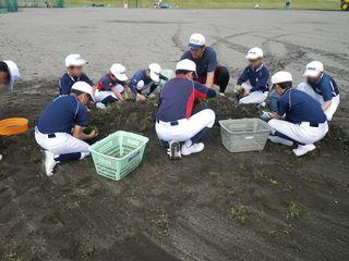 taisetsu_little_league_2018_06_23_003.jpg